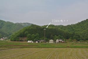 Dsc_3312